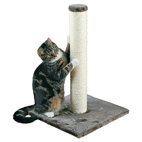 TRIXIE-Pet-Products-Parla-Scratching-Post