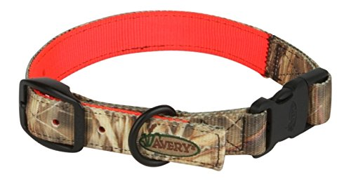 Avery Sporting Dog Reversible Collar,Large,KW-1 to Blaze Orange