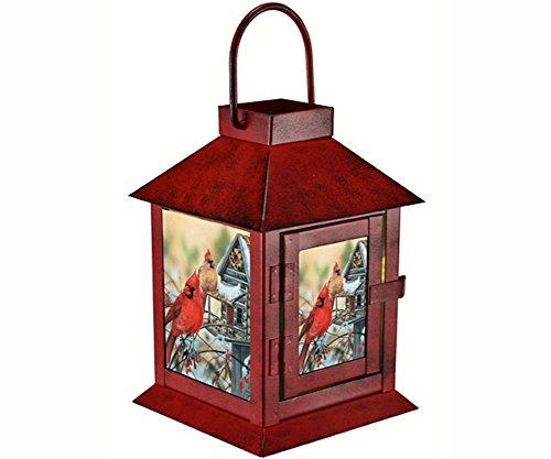 GC - Rustic Cardinals Lantern
