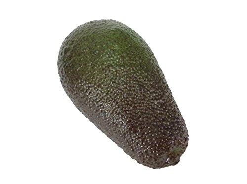 Avocado Fake Fruit Artificial Faux Vegetables Decor Children Teaching Props