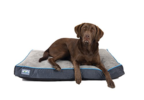 (Better World Pets 5-Inch Thick Waterproof Orthopedic Memory Foam Dog Bed with 180 GSM Removable Washable Cover (Large, Grey with Ocean Blue Trim) )