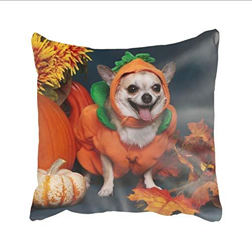 Laura Bunyan Pillow Cover, DIY Design Magnificent Home Decorative Custom Dog Halloween Costume Pillow Case 24