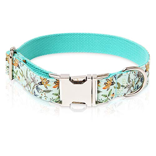 collar para perro ajustable broche metal blue cyan talle L