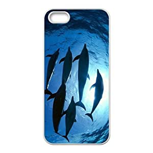 Adorable Dolphin Hight Quality Plastic Case for Iphone 5s