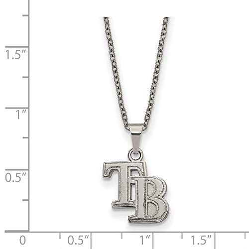 (MLB Tampa Bay Rays Stainless Steel Tampa Bay Rays Pendant on chain with 2 in ext Necklace Size One Size)
