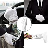 Hicdaw 7 Pairs White Cotton Gloves 8inch Cosmetic