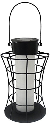 Alpine Corporation Solar Cylinder Lantern with 10 Warm White LED Lights (Alpine Lantern)