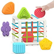 Toys for 1-2 Year Old Boy Girl,Baby Sorter Toy Colorful Cube and 6 Pcs Multi Sensory Shape,Learning Toys for G