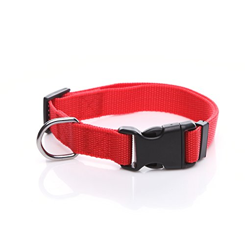 Nylon Adjustable Dog Collar - 3