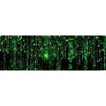 Posters: The Matrix Poster Art Print - Matrix Code, Digital Rain (36 x 12 inches)