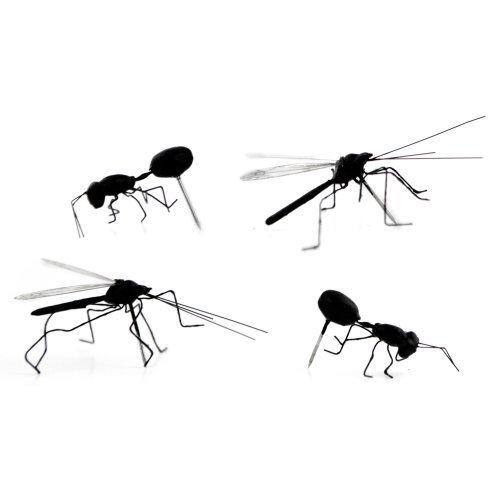 Kikkerland Insect Pushpins, Set of 4 (ST35)