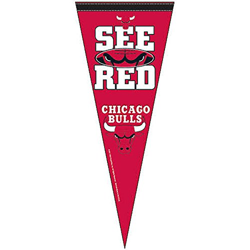 WinCraft NBA Chicago Bulls Premium Quality Pennant 12-by-30 Inch by WinCraft
