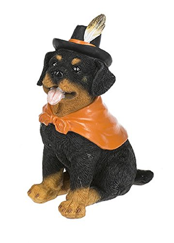 Cat Halloween Costumes Pinterest (Costume Canine Dog Halloween Polystone 5 Inch Tabletop Figurine, Rottweiler)