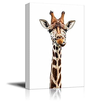 Giraffe Making A Face - Canvas Art