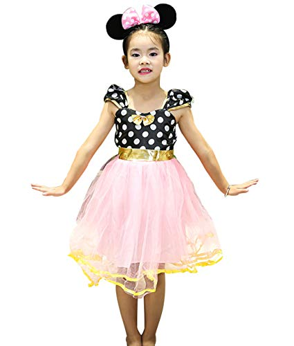 Birthday Party Tulle Tutu Costumes for Kids