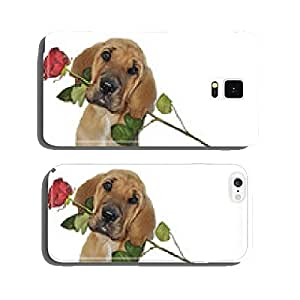 Broholmerwelpe brings red rose cell phone cover case iPhone6
