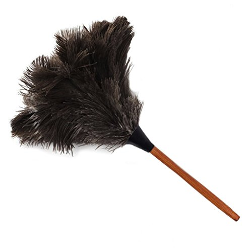 PNBB 16.9'' Ostrich Feather Duster with Wooden Handle by PNBB