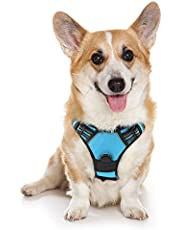 """rabbitgoo Dog Harness, No-Pull Pet Harness with 2 Leash Clips, Adjustable Soft Padded Dog Vest, Reflective No-Choke Pet Oxford Vest with Easy Control Handle for Medium Dog, Blue (M, Chest 19.1-29.3"""")"""