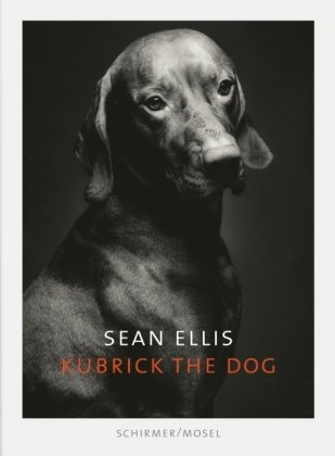 Sean Ellis: Kubrick the Dog - Stella Mccartney Buy