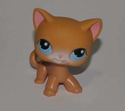 Amazon.com: Gato # 71 (Naranja, ojos azules) Littlest Pet ...