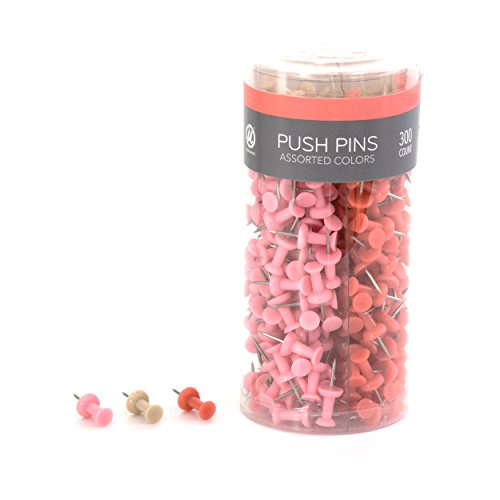 - U Brands Push Pins, Plastic Head, Steel Point, Floral Nature Fashion Colors, 300-Count