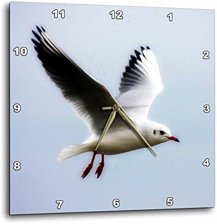 3dRose DPP_47240_1 Seagull Art Birds Nature Wall Clock, 10 by 10-Inch