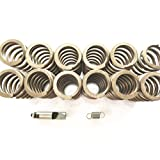 DieselTuff HD valve springs & fuel pin & 3200 spring for Cummins (6bt kit)
