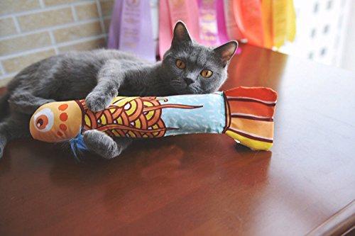 25 opinioni per Erba gatta giocattoli del gatto,MAMACHU Giochi per gatti Pesce graffi gatto con