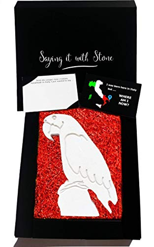 Parrot Gift for Mom or Dad - Symbol of Health & Hope - Gift Box & Message Card