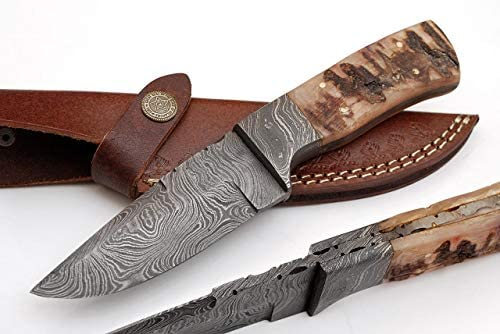 SharpWorld 8 Inches Beautiful Damascus Knife Made of Remarkable Damascus Steel Ram Handle -Best Hunting Knife with Sheath TJ108