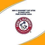 ARM & HAMMER Clump & Seal Platinum Cat