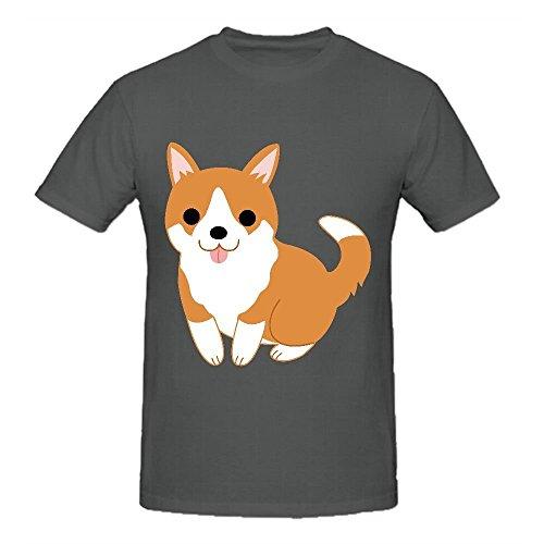 Buy corgi puppies for sale