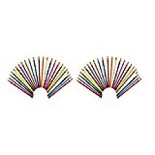 - Prismacolor Col-Erase Erasable Colored Pencils, Set of 24 Assorted Colors (20517), 2 Packs