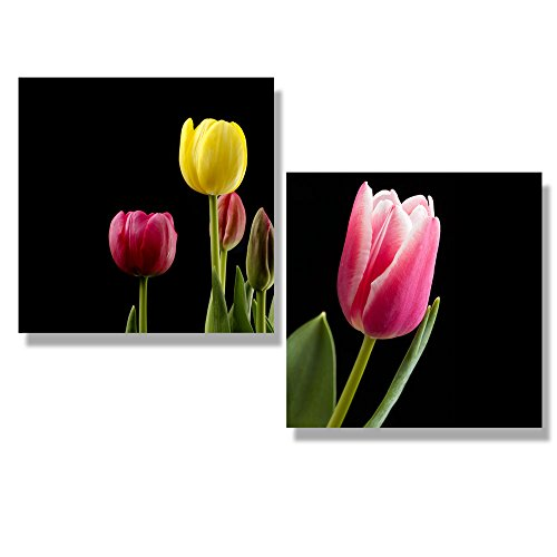 Tulips at Different Stages of Blooming with a Black Background Wall Decor ation x 2 Panels