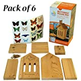 Club Pack of 6 Woodlink Butterfly House DIY Craft Kits