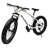 STURDY BIKES Mountain Carbon Steel Fat Bike with 26X4 inch Tyres (White)