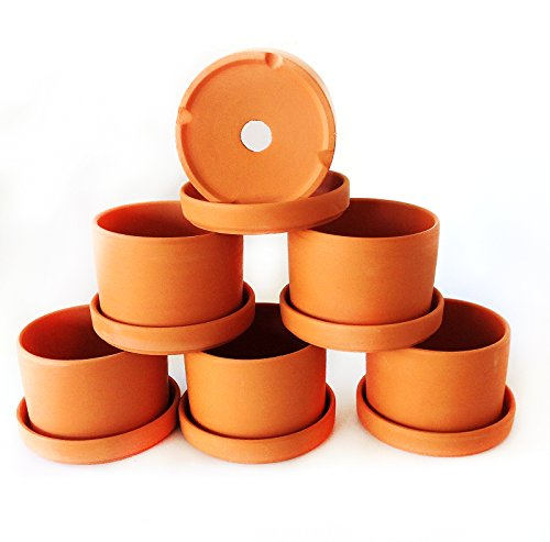 - Natural Terracotta Round Fat Walled Garden Planters with Individual Trays. Set of 6