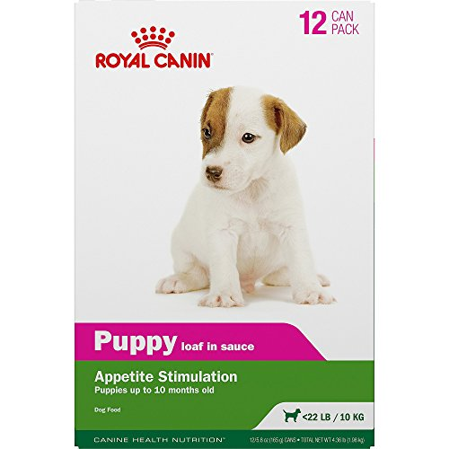 Royal Canin Canine Health Nutrition Puppy In Gel Canned Dog Food, 5.8 oz, Pack of 12