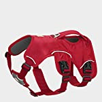 RUFFWEAR - Web Master, Multi-Use Support Dog Harness, Hiking and Trail Running, Service and Working, Everyday Wear 6