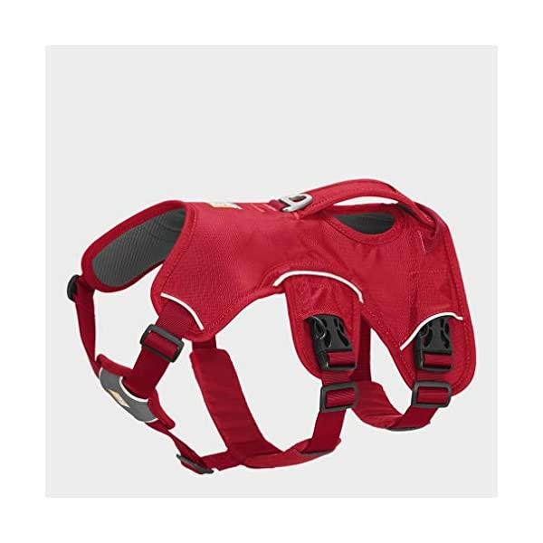 RUFFWEAR - Web Master, Multi-Use Support Dog Harness, Hiking and Trail Running, Service and Working, Everyday Wear 2