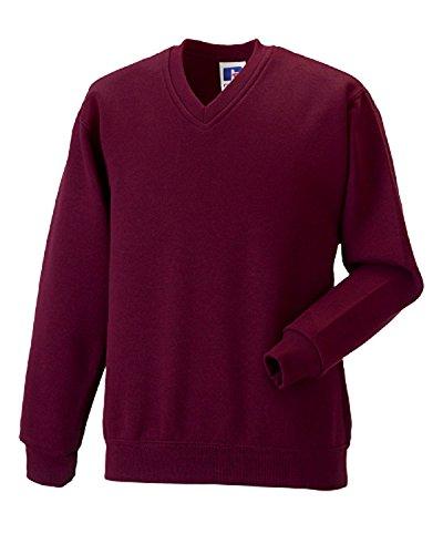 Unisex Girls Boys School Uniform School Wear Russell Jerzees Schoolgear (Jerzees V-neck Sweatshirt)