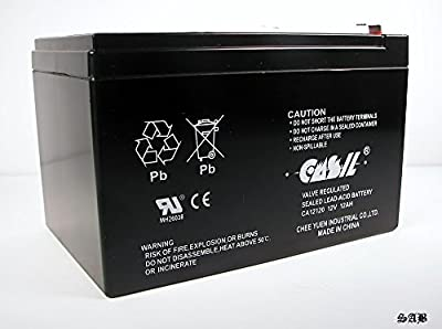Casil CA12120 12v 12ah F2 SLA AGM DEEP-CYCLE RECHARGEABLE BATTERY