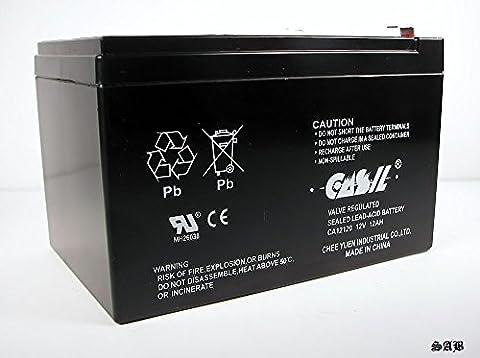Casil CA12120 12v 12ah F2 SLA Battery for EverFocus Access Control Kit - Everfocus Alarm