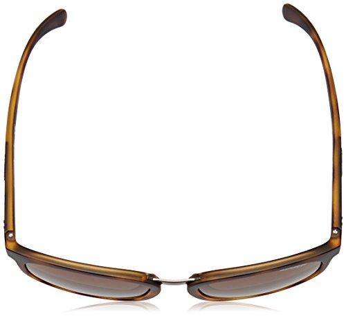 para Dark Havana 55 Hombre Arnette Sol Matte Gafas de Tigard x6CqSwwUnI