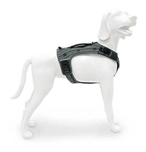 M EQDOG New Pro Harness Reflective Stripe, Medium