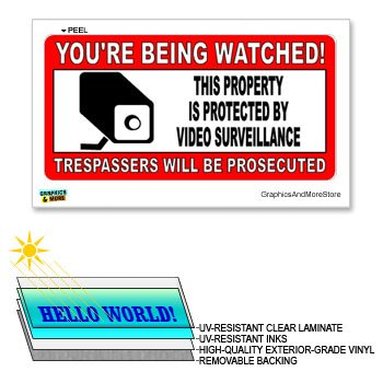 You're Being Watched Security Video Surveillance - 12 in x 6 in - Laminated Sign Window Business Sticker
