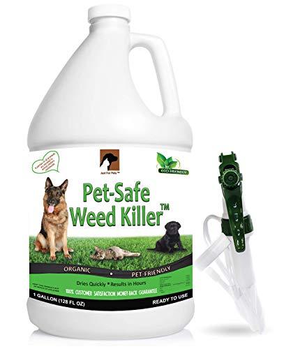 Just For Pets Pet Friendly & Pet Safe Weed Killer Spray (128 oz Gallon) (Safe Pet Weed Killer)