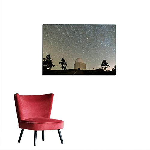 kungfu Decoration Home Decor Wall observatorio galaxia Art Poster W35.4 x L31.5 ()
