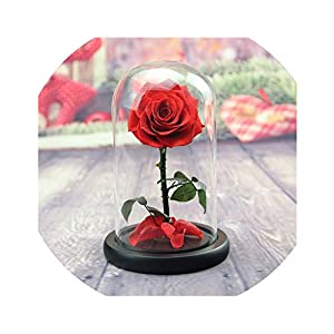 Little-Lucky Artificial Rose Everlasting Flower Single Branch Rose Glass Cover for Chinese Valentine's Day Present Home DIY Decoration 101