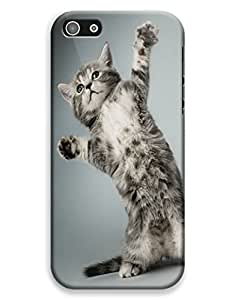 It was THIS BIG Kitty Case for your iPhone 5C